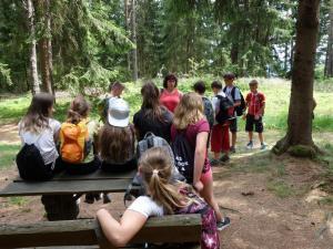 Die Kräuterwanderung wurde von Frau Möller geführt.